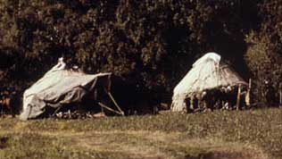 two white tents in a field: yurts