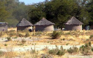 small round mud houses with thatched roofs in dry grassland