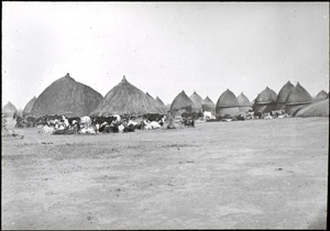 black and white photo of a village of thatched huts
