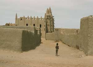 Mudbrick walls and the Djenne mosque (Mali)