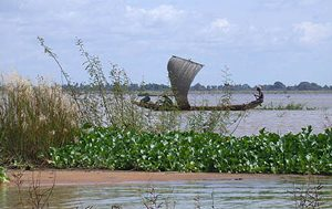 Niger River, West Africa