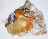 Minoan painting on the wall of the Hyksos palace