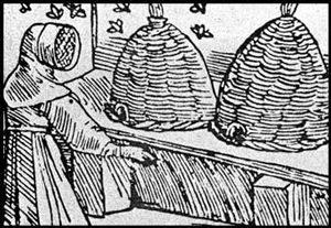 Colonial woman tending basketry beehives