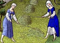 Two women raking straw in a field wearing long blue dresses over white tunics with white caps