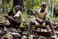 Children open cocoa pods (Ivory Coast, 2011)