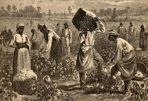 black people in a field picking cotton