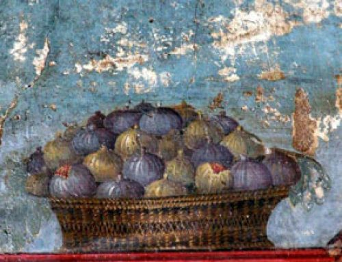 Mediterranean Food in the Roman Empire