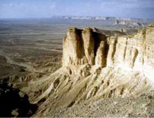 What are sedimentary rocks? Shale and limestone