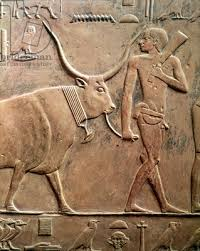Egyptian relief carving of a man leading a bull: the background has been cut away