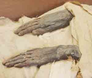 Mummified hands