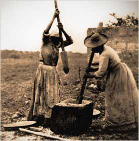 Enslaved women pounding rice in the Carolinas: Rice history