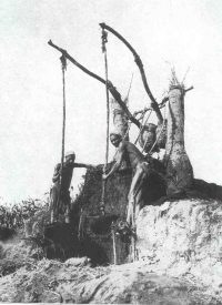 Egyptian shaduf: wooden poles with ropes attached and buckets on the end of the ropes