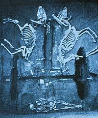 Shang Dynasty horses, ca. 1200 BC