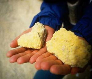 A child holding yellow rocks on their palms