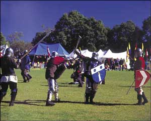 A tournament - men in armor with shields fighting on the grass