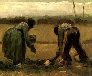 Planting potatoes (Vincent Van Gogh, 1885)