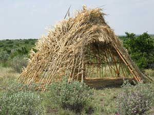 Ute wickiup - a little house made of sticks