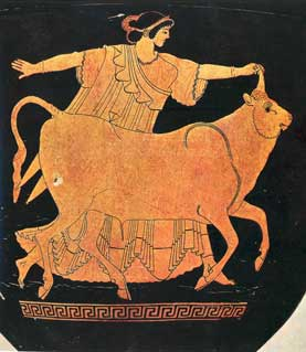 Europa and the bull, on an Athenian vase painted by the Berlin Painter
