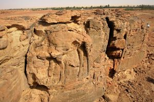 Camels carved into a cliff by the roadside in the Arabian peninsula (modern Saudi Arabia), about 1-100 AD
