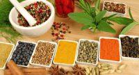 Indian herbal medicines