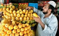 An Indian man selling mangoes
