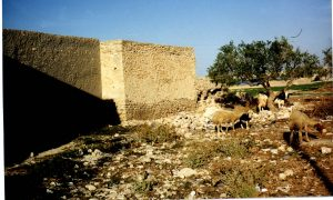 A Ribat, or fort, in North Africa