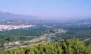 A valley with scrubby trees and a river running through it: Sparta, Greece