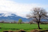 Al Tabari's homeland in Tabiristan