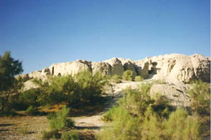 white cliffs and green scrubby trees - Uzbekistan - Ibn Sina's birthplace