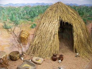 Apache house and tools: a grass house