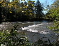 Cherokee fishing weir: a sort of stone fish trap in a river