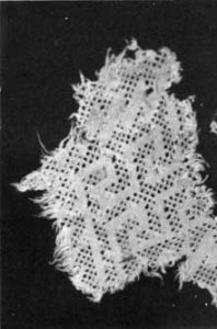 a scrap of white lace - Pueblo cotton cloth: Native American clothing