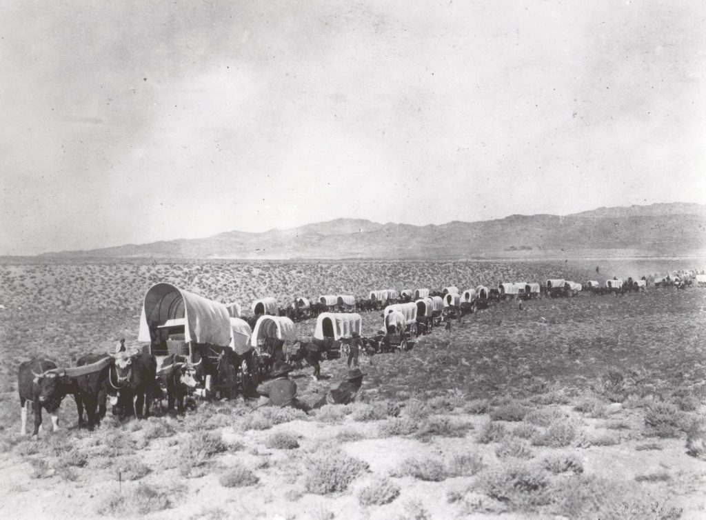 Hundreds of covered wagons in a long line