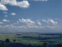 Cumulus clouds: puffy and white