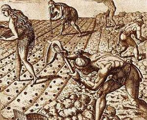 Women and men farming in south-eastern North America (1500s AD)
