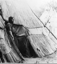 Nez Perce tipi covered with grass mats (from 1910)