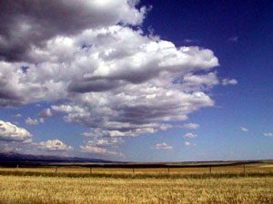 The Great Plains: flat brown land and a lot of sky