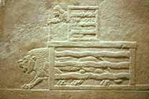 A lion being released from a cagefrom a carving on the wall of an Assyrian palace.(See the man on top who is releasing the lion?)