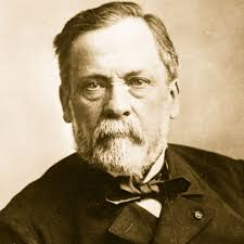 Louis Pasteur: a middle-aged white man with a short beard looking a little mussed.