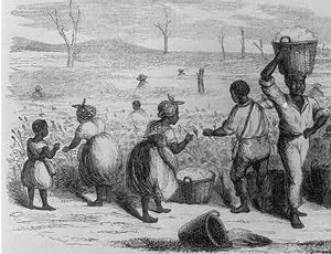 Picking cotton, and wearing cotton clothes (Georgia 1858)