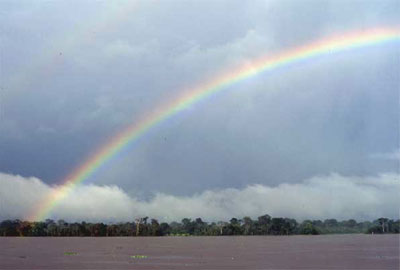 Rainbow over Amazon river