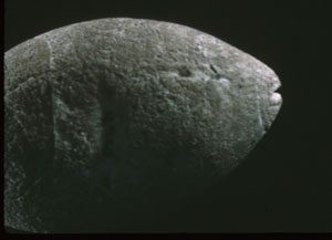 Stone carving of a fish (San Francisco, ca. 7000 BC) - History of Fishing