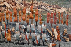 Smoking salmon on cedar sticks set upright around a small fire - Native American food