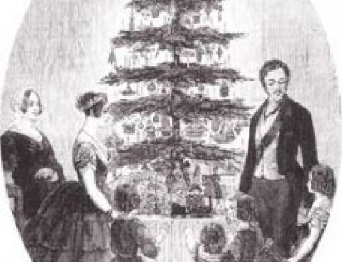 Christmas Trees – American holidays