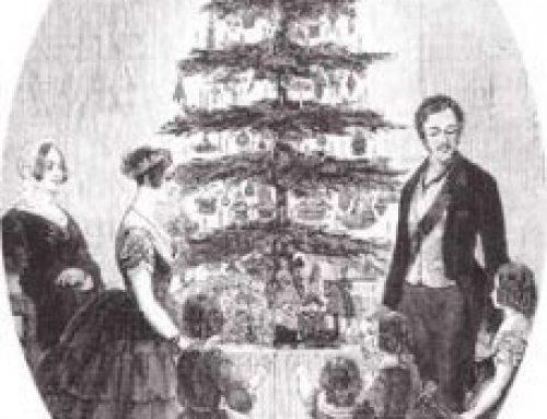 Christmas Trees – American holidays