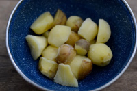 Wapato roots in a bowl - they look like boiled potatoes