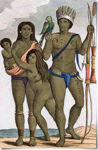 differences between kalinago and taino society Difference between the tainos and the kalinagos  distribution list consolidator: bpi #: bill of difference in gothic and romanesque architecture.