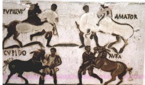 Famous race-horses, with their names, in a Roman mosaic floor: Roman chariot racing