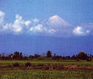 West Asian environment – Mesopotamia and Iran