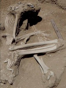 skeleton of a human bent into the fetal position, in the dirt. Why do people fight wars?